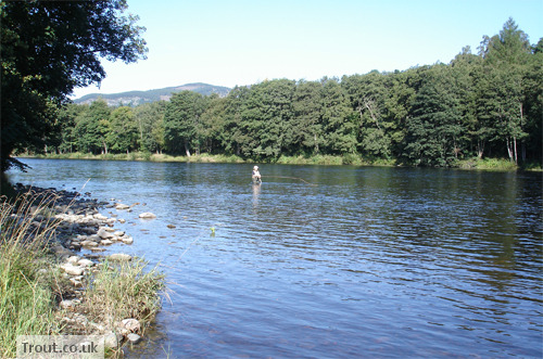 Trout Fishing in Loch Tummel