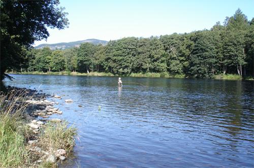 Trout Fishing on Loch Watten