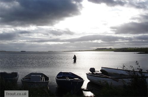 Trout Fishing in Loch Watten