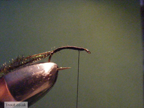 Black Spider Trout Fly Step 3