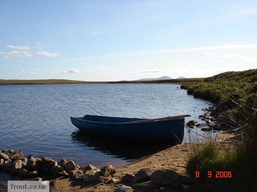 Hillochs Trout Loch