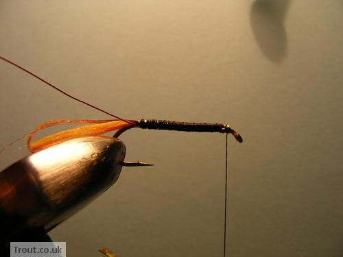 The Taxidermist Fly Step 4