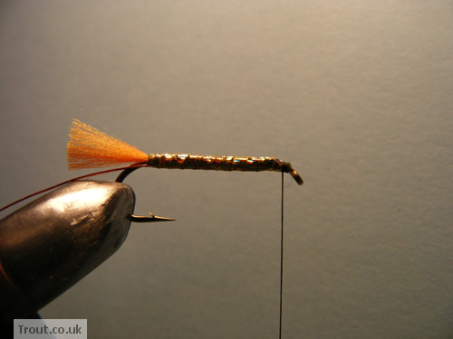 The Taxidermist Fly Step 6